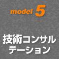 model5 技術コンサルテーション